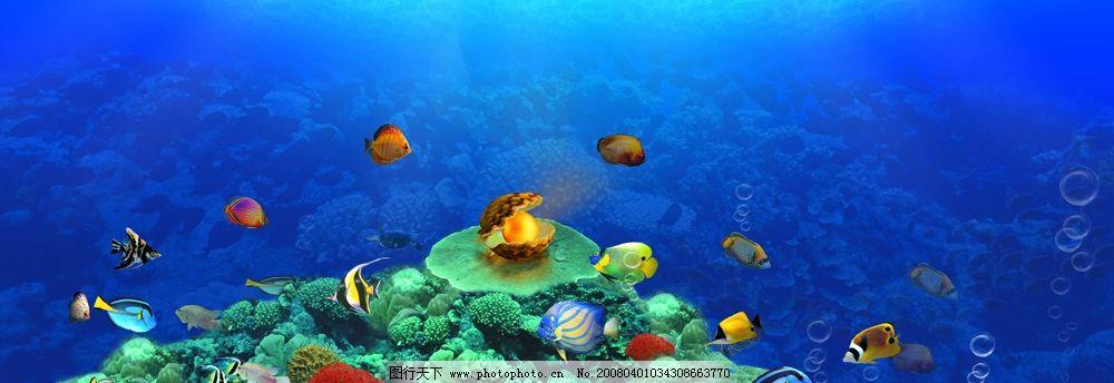 摄影图库 旅游摄影 其他  海底世界 海底图 海底礁石 群鱼 珊瑚 海底