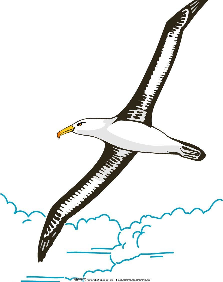 海鸥 其他矢量 矢量素材 矢量图库   ai