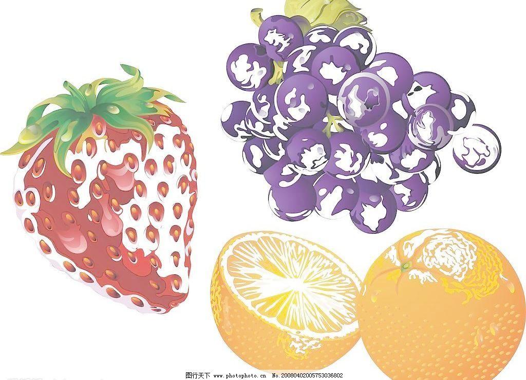 水果与动物正负同构