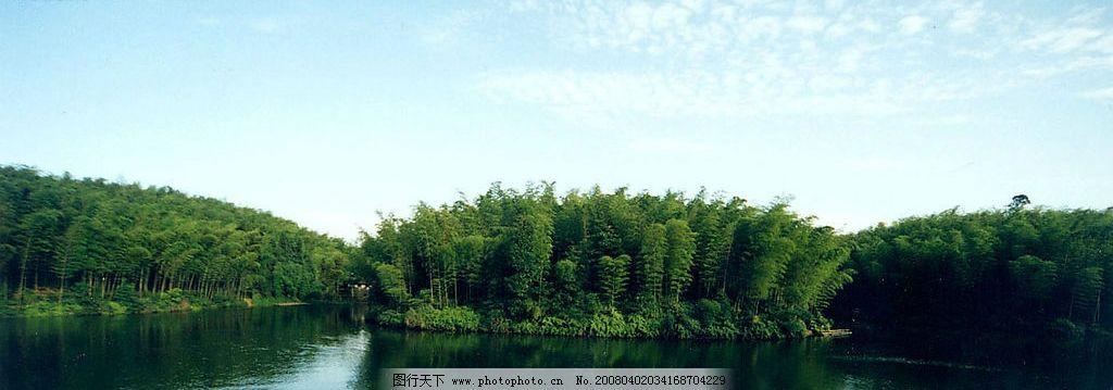 竹海风景图图片