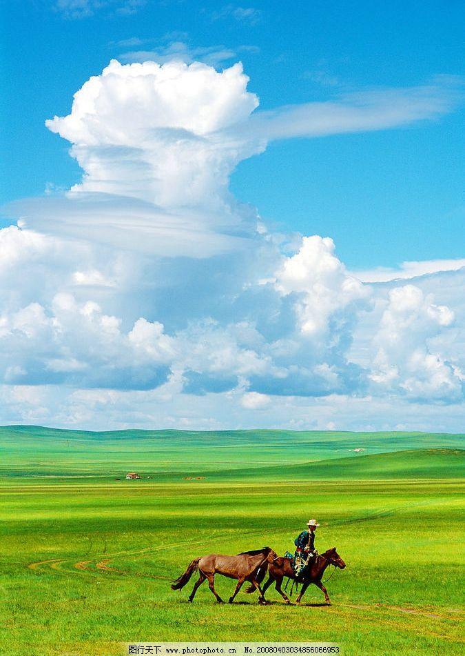 草原风光 草原 草地 天空 大地 马匹 蓝天 自然景观 自然风景 摄影