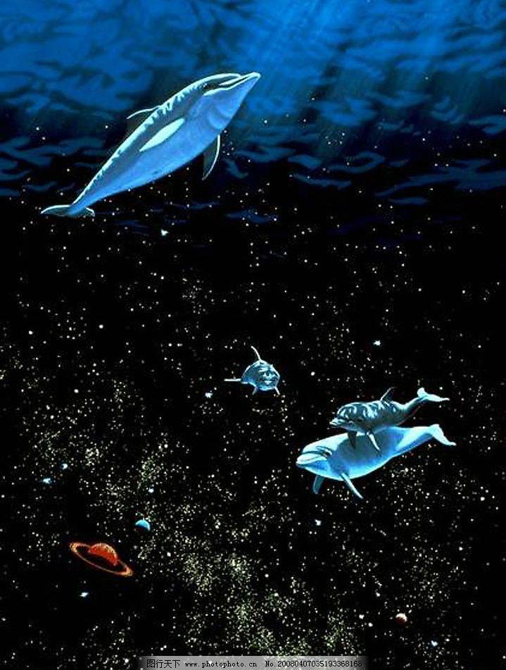 梦幻海底 海豚 海底 生物世界 海洋生物 摄影图库 72 jpg