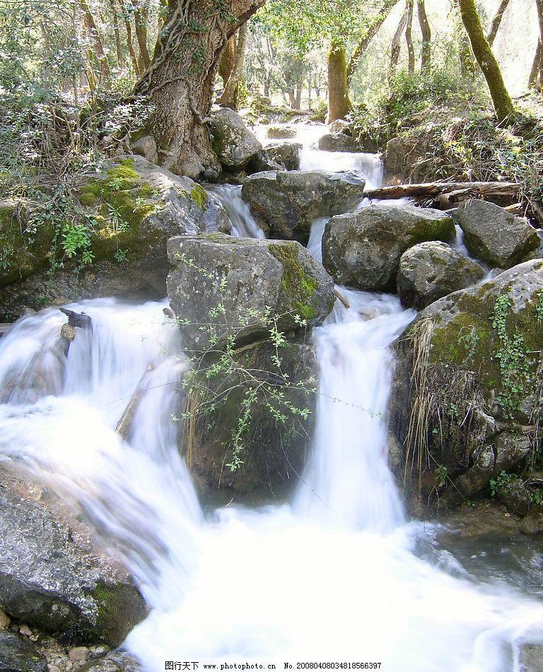 林间石水 美丽风景 山清水秀 林间溪水 风景图 树 自然美丽 摄影图库