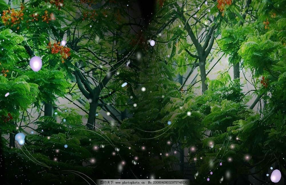 魔幻森林 魔幻 梦幻 树林 森林 psd分层素材 背景 梦幻素材 源文件库图片