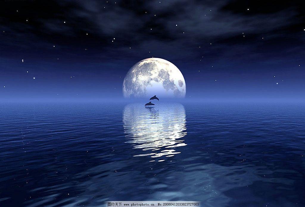 中秋月圆 海 鸟 月亮 夜晚 其他 图片素材 中秋 设计图库 300 jpg