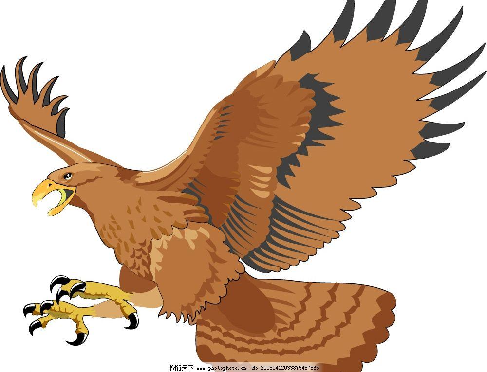 老鹰 飞翔 天空 翱翔 其他矢量 矢量素材 矢量图库   ai