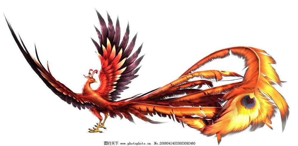 凤凰展翅 鸟 设计素材 精美 游戏设计 吉祥象征 华丽 呈祥 动物
