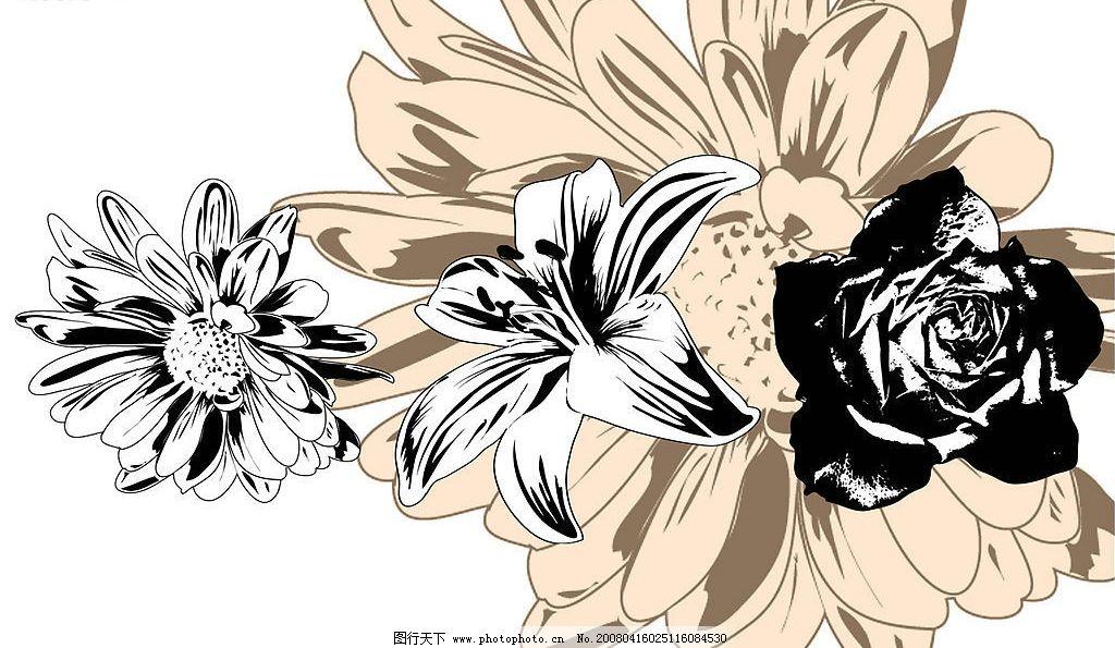 精美手绘黑白花卉矢量素材 eps格式 手绘 黑白 矢量素材 花朵 雏菊 玫