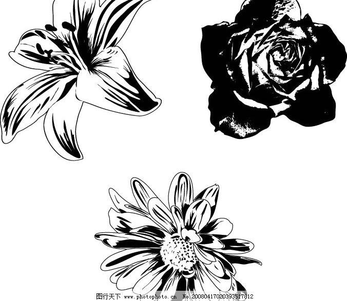 花卉 矢量 素材 底纹边框
