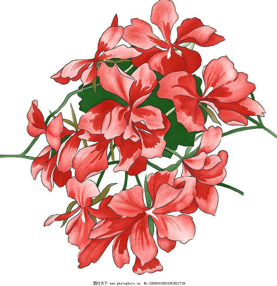 花 花纹图片