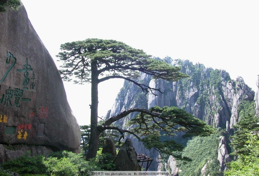 黄山风光 黄山 迎客松 自然风光 旅游摄影 自然风景 摄影图库 96 jpg