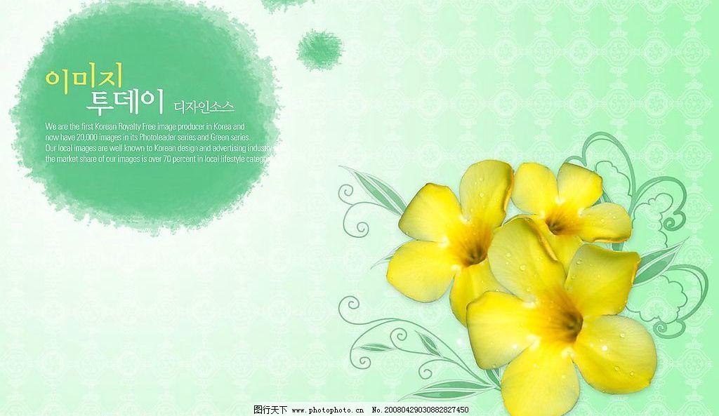 鲜艳 鲜花 手绘 韩字 广告设计模板 国外广告设计 源文件库