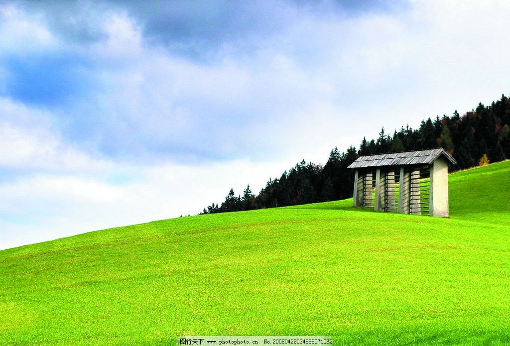 小草 小草地 白色建筑 森林 天空 自然景观 自然风景 摄影图库 72 jpg