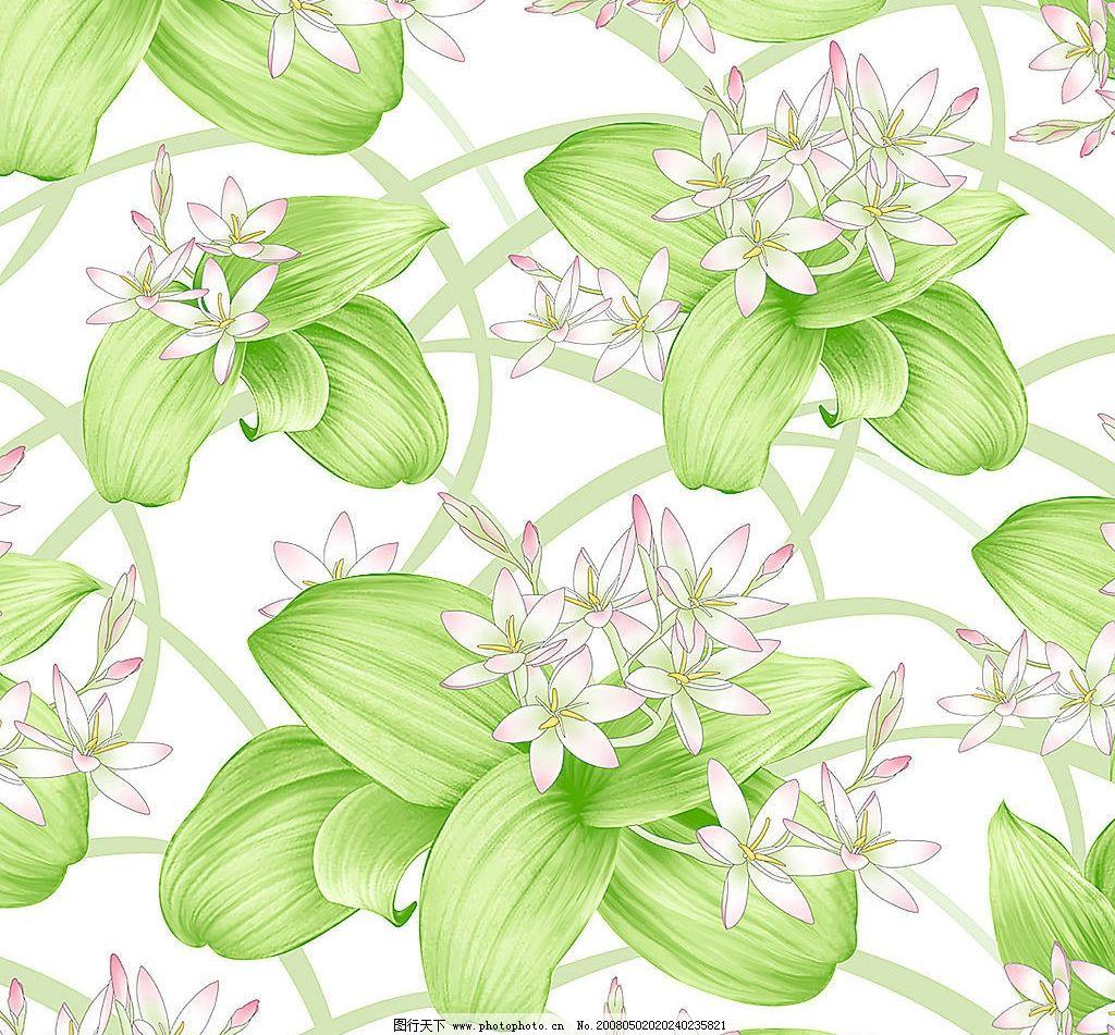 绿叶白花 花样 图案 背景 底纹边框 背景底纹 设计图库 300 jpg