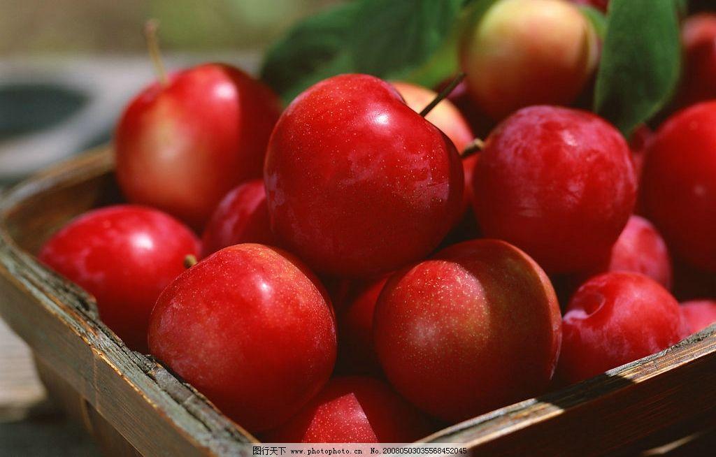 水果 苹果 红苹果 背景 叶子 摄影图库