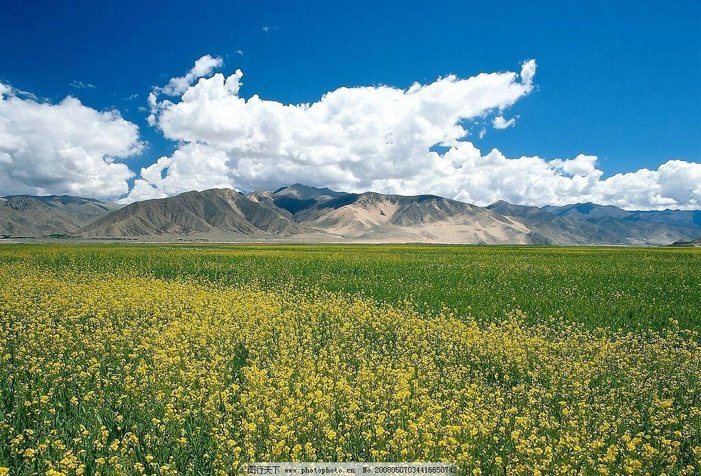 蓝天草原 自然景观 山水风景 世界风光壁纸 摄影图库 72 jpg