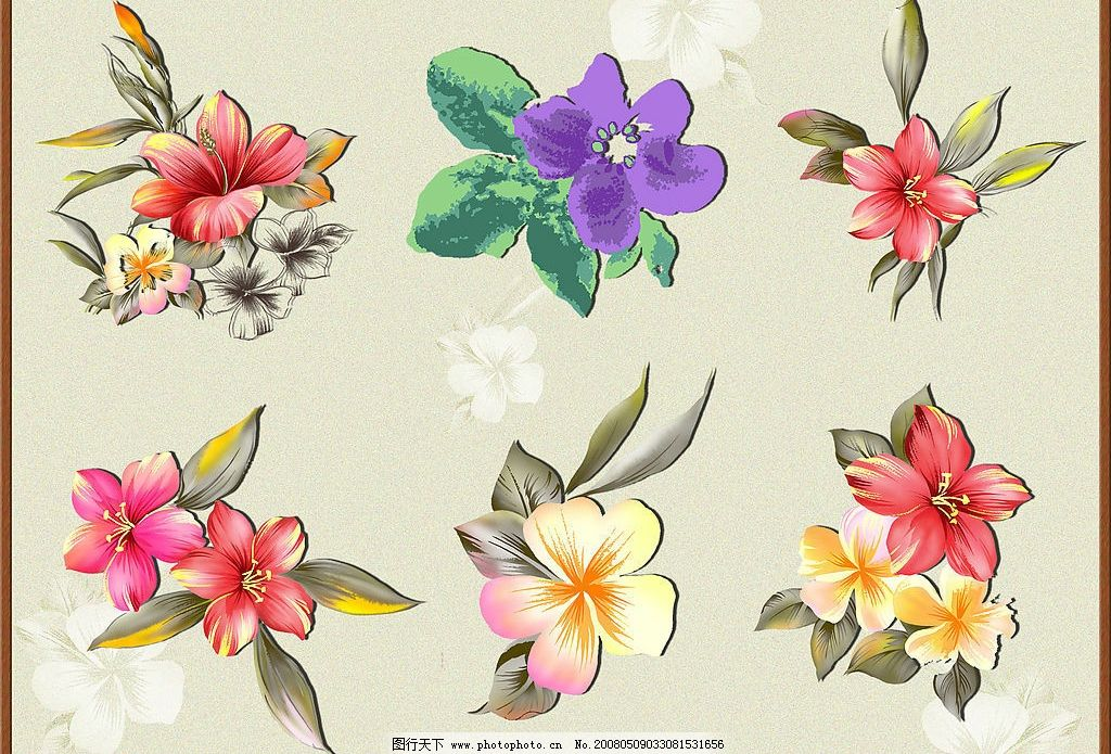 韩国精美手绘花朵图片