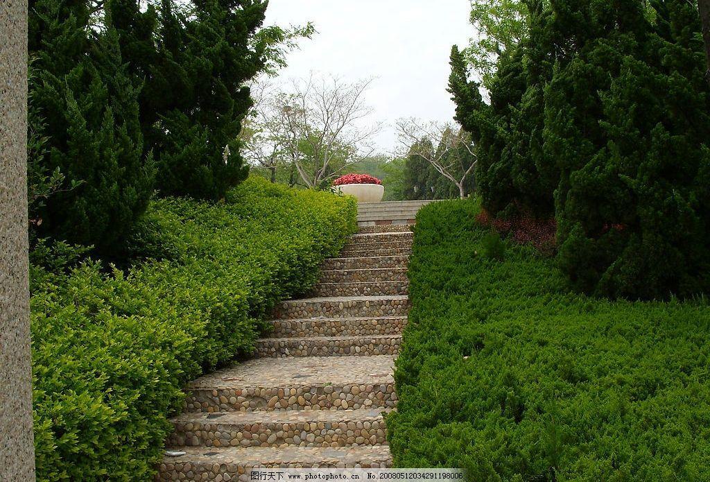 球石台阶 蓬莱 田横山 景区 五a级 球石 台阶 青松 绿树 盆花 风景