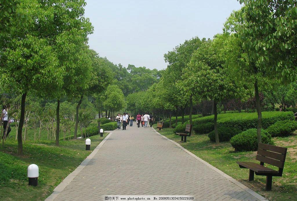黄山湖公园 树木 小路 旅游摄影 自然风景 摄影图库 180 jpg