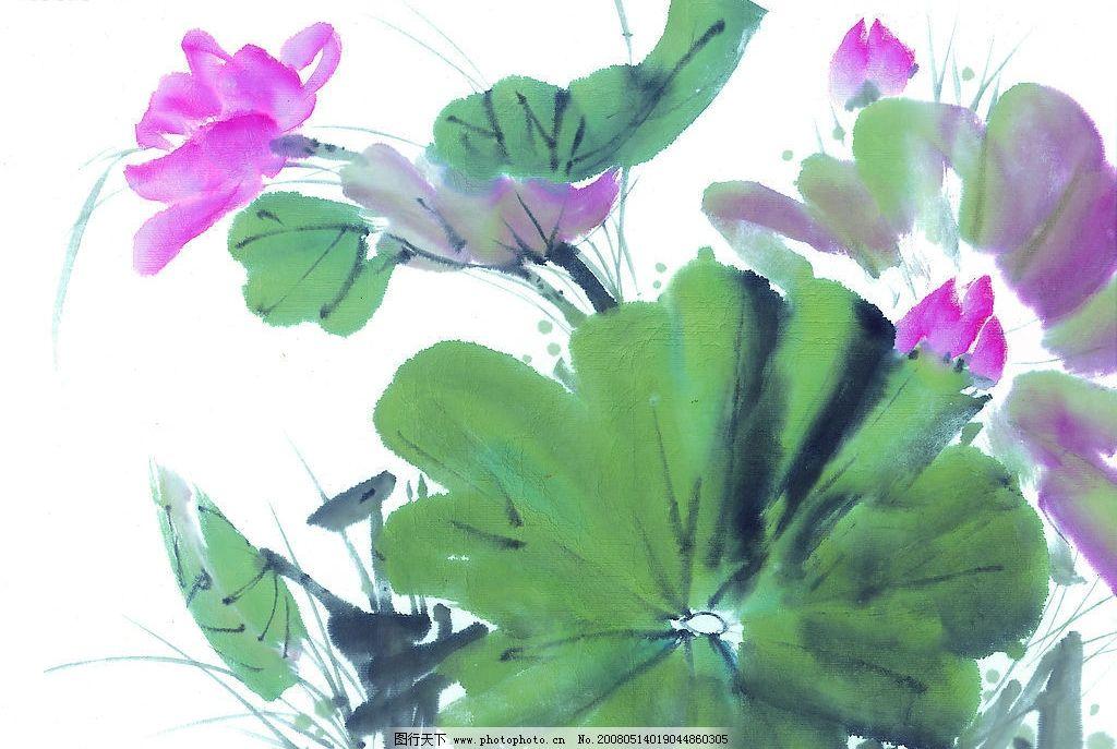 中国国画 花 荷花 水墨画 国画 中国画 绘画 艺术 文化艺术 绘画书法