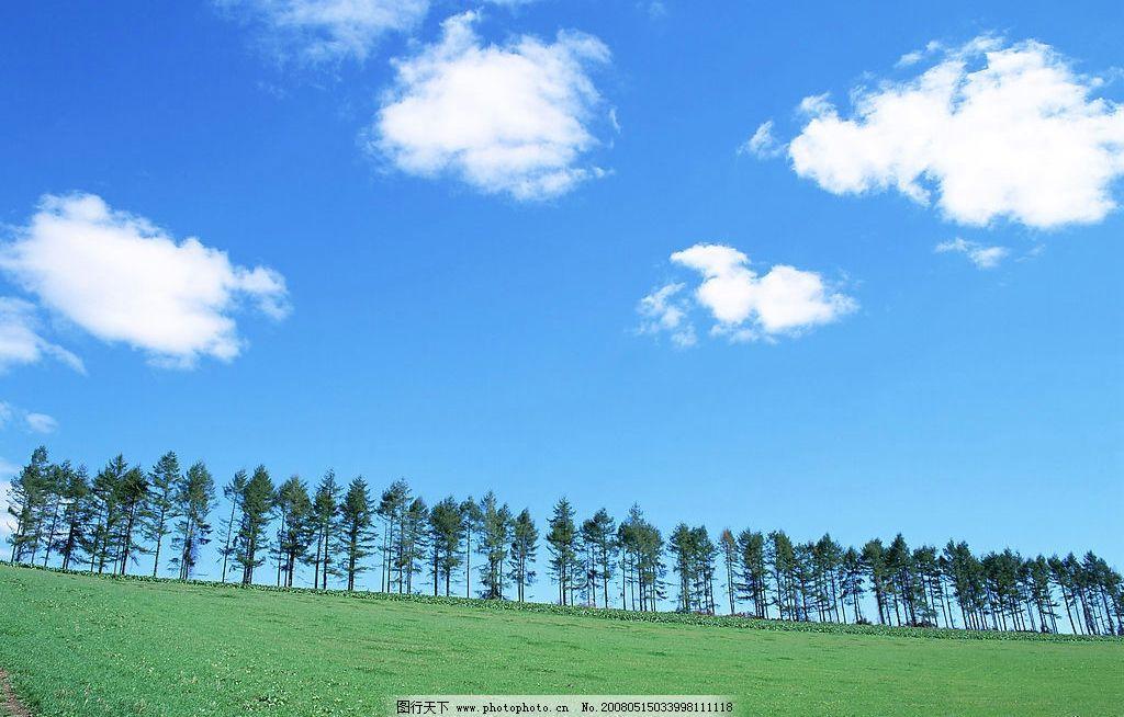 晴朗的天空图片,蓝天 白云 草地 树木 旅游摄影 国内