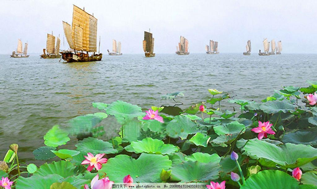 无锡风光 太湖 太湖风光 帆船 荷花 一帆风顺 自然景观 自然风景 摄影