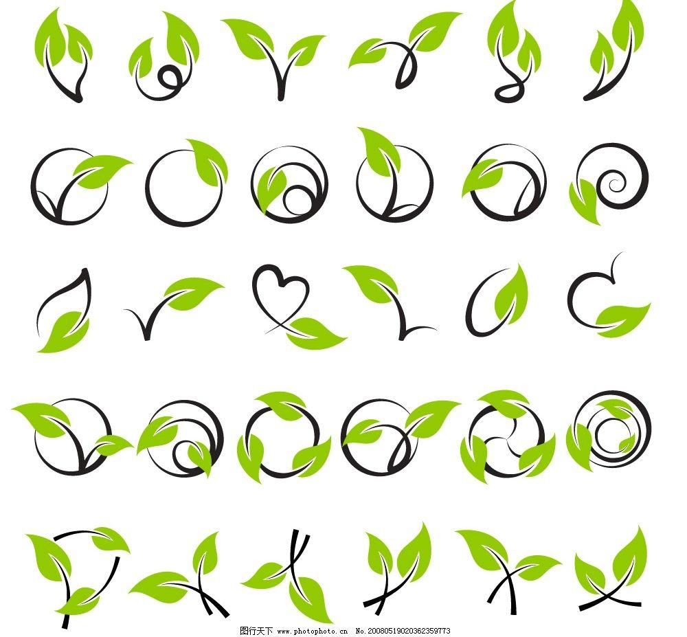 矢量藤类植物图片