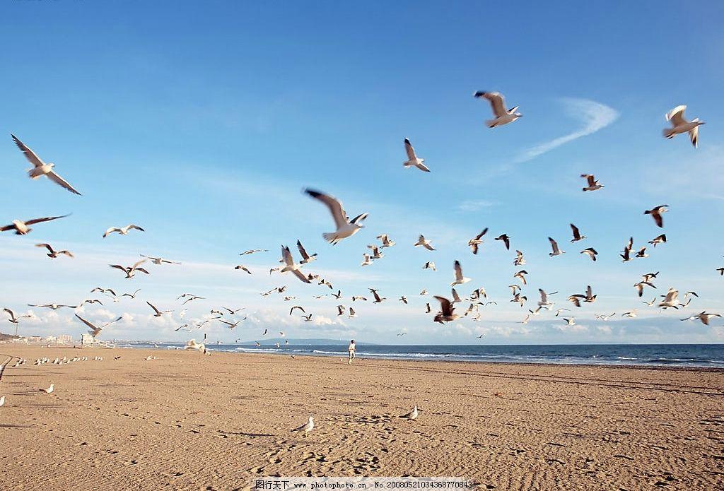 沙滩 蓝天白云