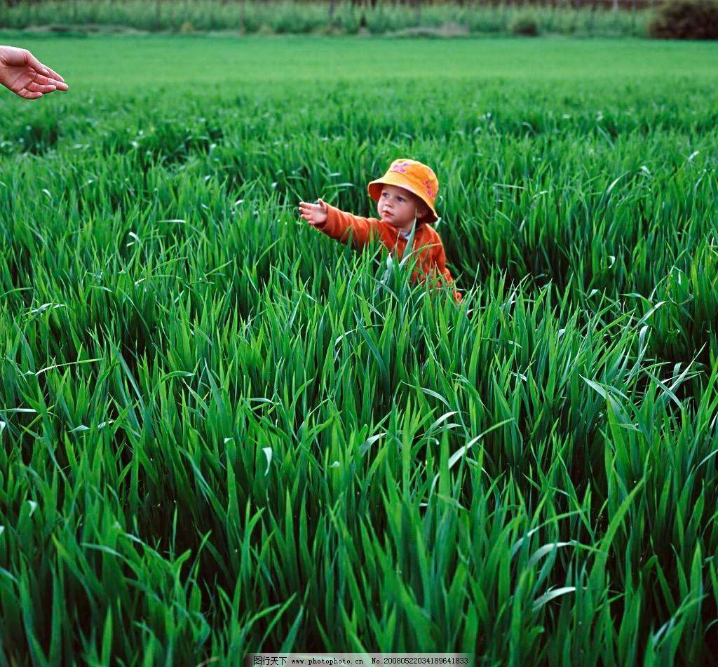 春天的畅想 春 春天 草地 小孩子 孩 绿 绿色 旅游摄影 自然风景 摄影