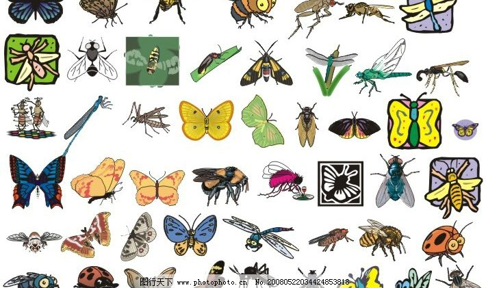 98种飞虫形态矢量图图片