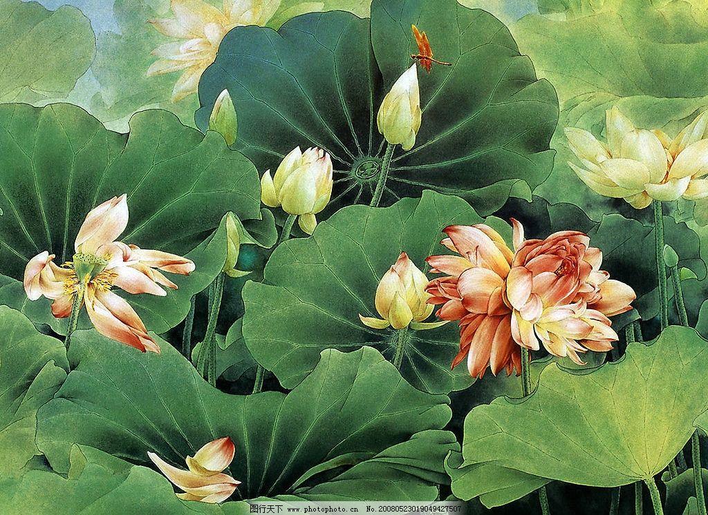 工笔画 荷花 植物 文化艺术 绘画书法 设计图库 150 jpg