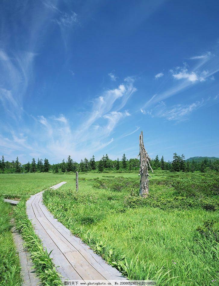 小路 绿地 小草 天空 蓝天 旅游摄影 自然风景 美丽风光素材 摄影图库
