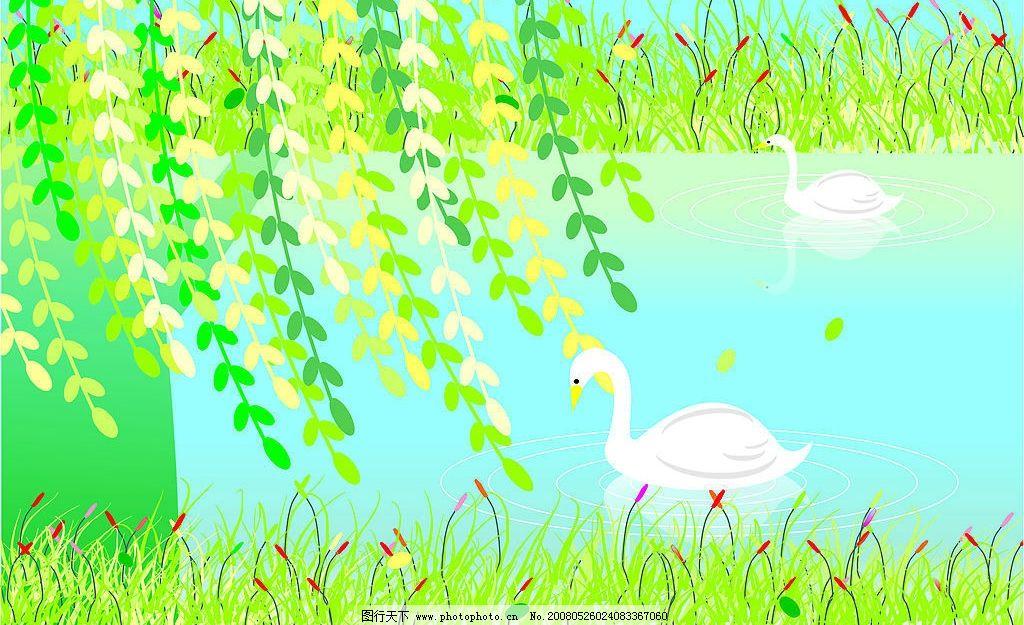 春天 柳树 池塘 天鹅 自然景观 自然风景 矢量图库   cdr