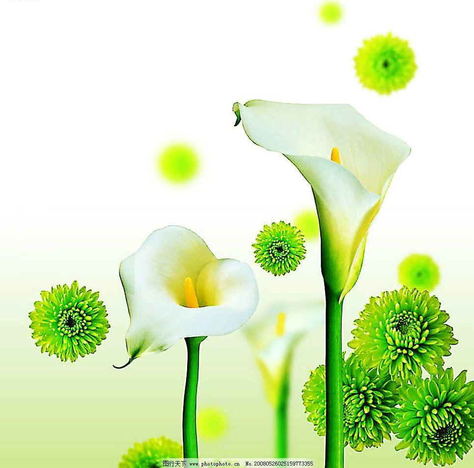 ppt 背景 壁纸 电脑桌面 发芽 绿色 绿色植物 嫩芽 嫩叶 设计 矢量 矢