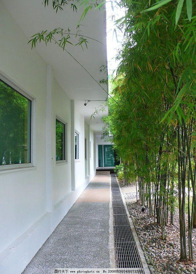 庭院 房屋 休闲路 竹子 清脆 鹅卵石 门窗 玻璃 铁蓖 水道 旅游摄影