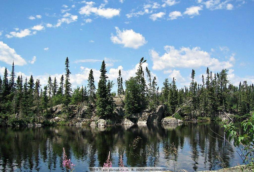 飘渺树 树 蓝天 白云 水 倒影 石头 自然景观 自然风景 缥缈树 摄影