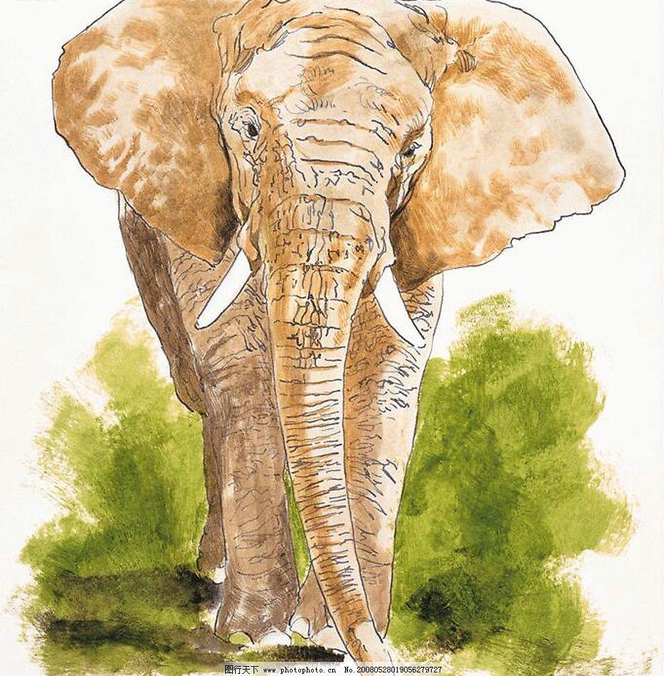 工笔画 野生 动物 大象 文化艺术 绘画书法 设计图库 150 jpg