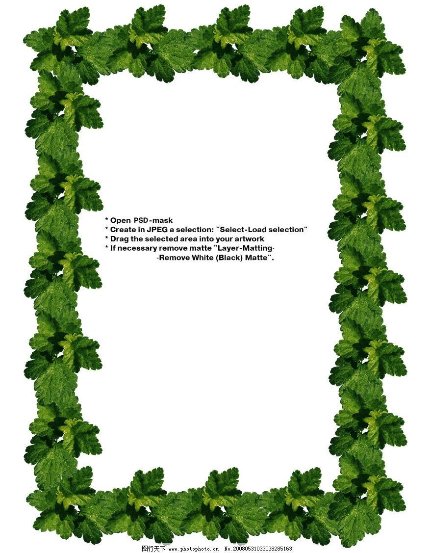 相框 相架 边框 绿叶 春天 春色 春季 绿叶边框 植物 植物边框 果实 p
