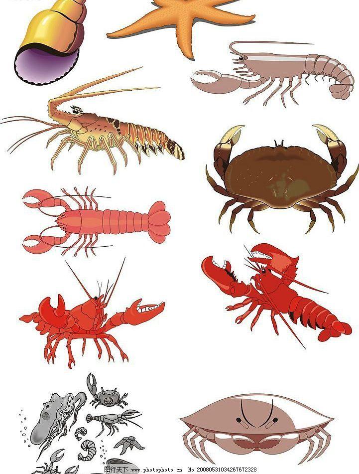 海鲜 生物世界 海洋生物 矢量图库