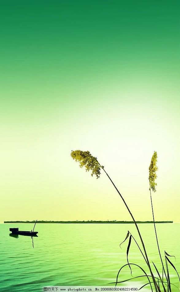 有意境的 水 船 芦苇 植物