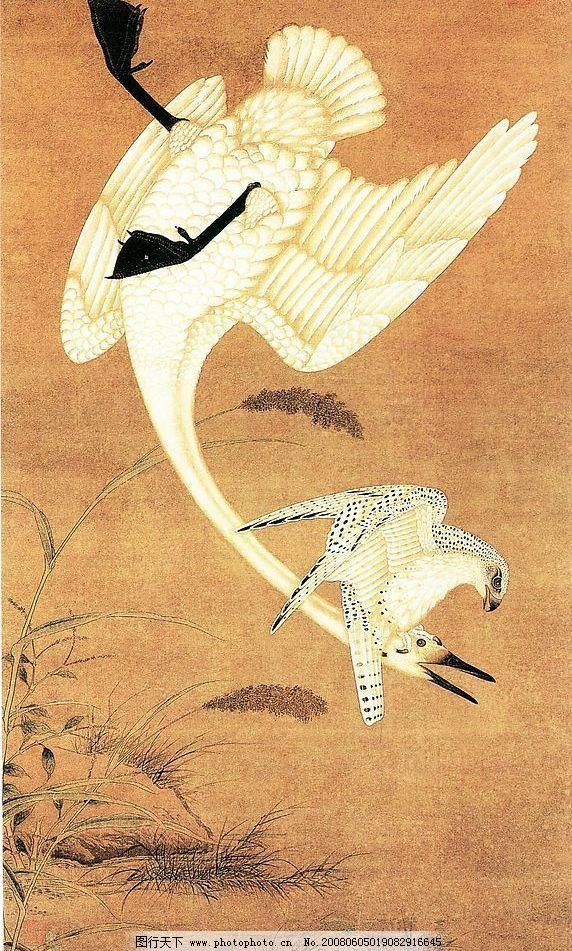 鹰击天鹅图 国画 花鸟 文化艺术 绘画书法 国画花鸟 设计图库 300 jpg