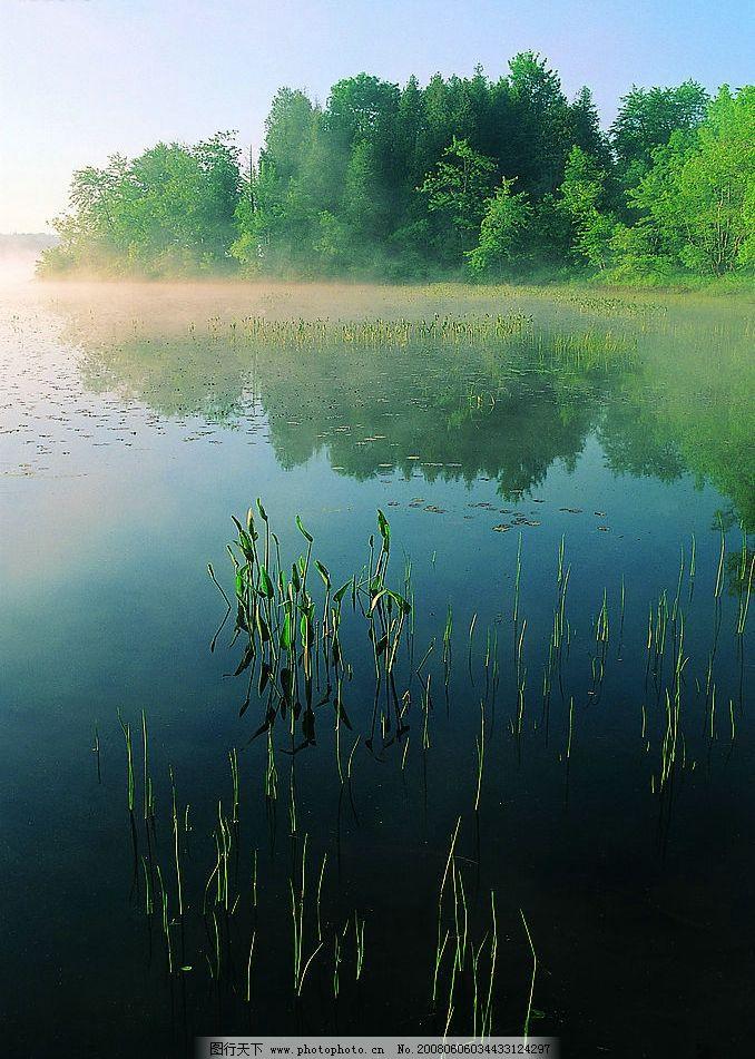 山水如画 树木 山水 水草 清澈 水面 倒影 自然 美丽 自然景观 山水