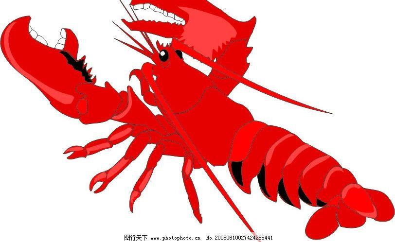 虾 海生物 动物 生物 生物世界 海洋生物 矢量图库   cdr
