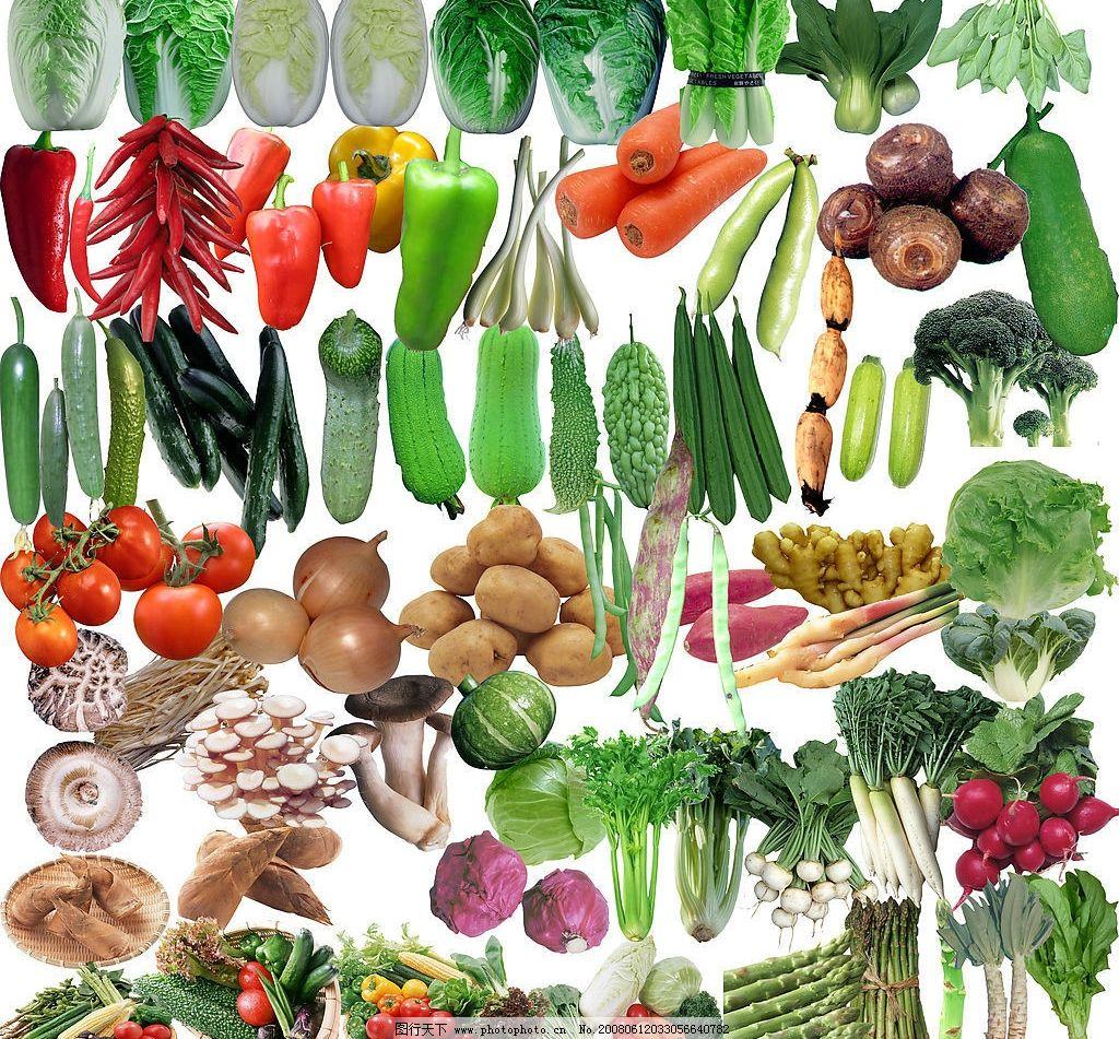 蔬菜瓜果大全图片