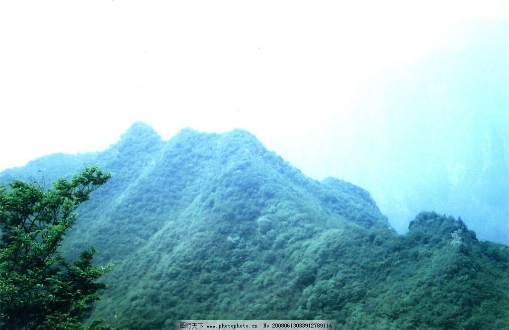 神农山 树 雾 阴天 旅游摄影 国内旅游 神农风光 摄影图库 400 jpg