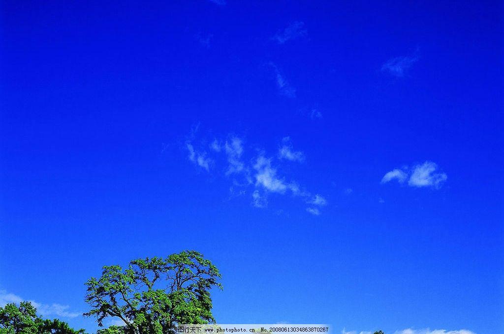 摄影图库 自然景观 自然风景  蓝天天空 蓝色 蓝天 天空 树木 森林