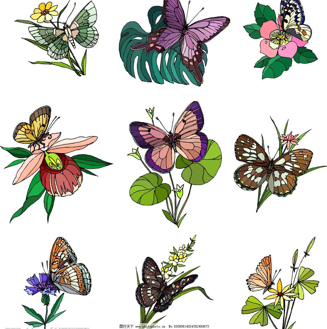 花和蝴蝶 矢量图库