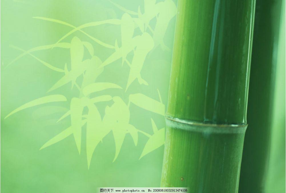 竹子菜单底图 dvd菜单底图 竹子 设计素材 psd分层素材 背景 源文件库