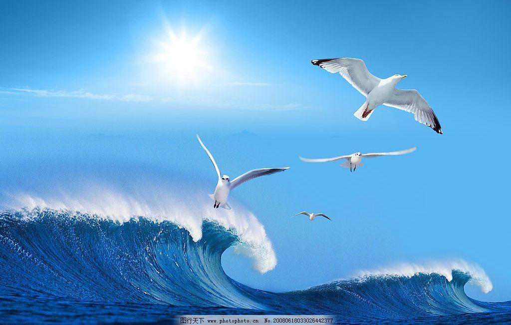大海里巨型动物图片
