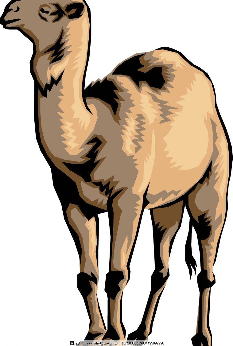 骆驼 生物世界 其他生物 矢量动物 矢量图库   wmf